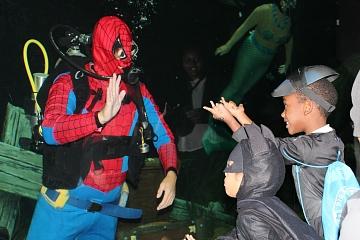Image: AquaScarium VII: Family Halloween Party