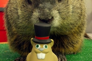 Image: Ground Hog Day Pre-Party