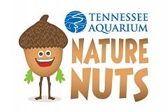 Image: Nature Nuts: Creek Stomp
