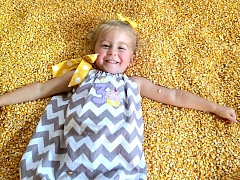 Rock City's Enchanted MAiZE at Blowing Springs Farm