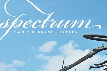 Image: Spectrum 2016 Silent Auction